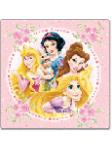 Princess Ученически раници